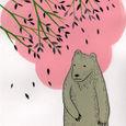 Treebear1
