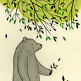 Treebear8