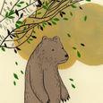 Treebear14