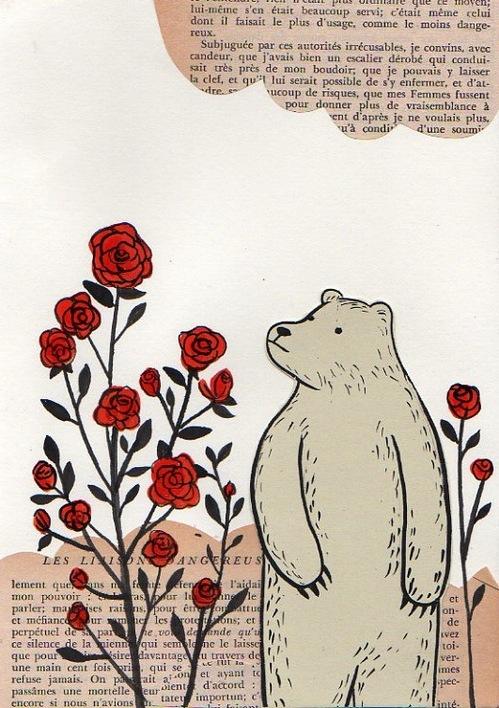 Rosebear2