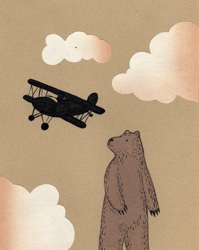 Plane_bear